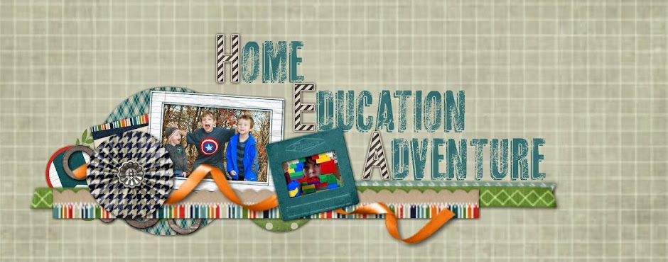 Home Education Adventures