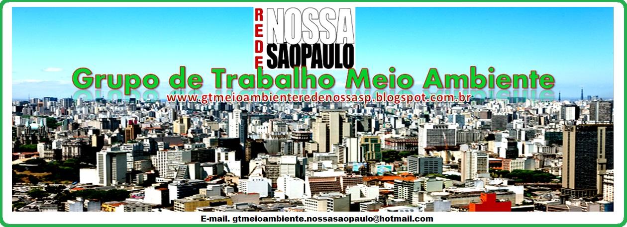 GT de Meio Ambiente Rede Nossa São Paulo