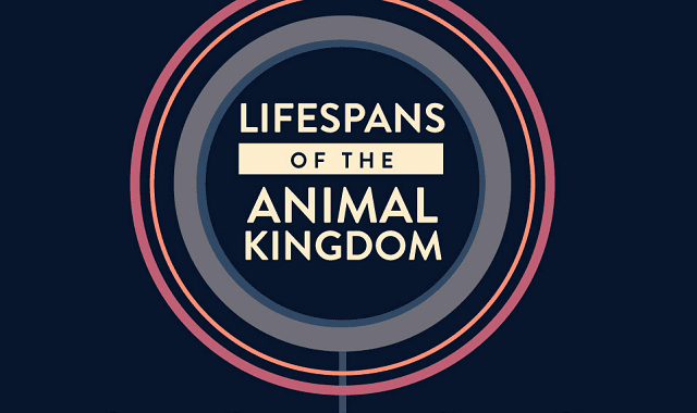 Lifespans of the Animal Kingdom