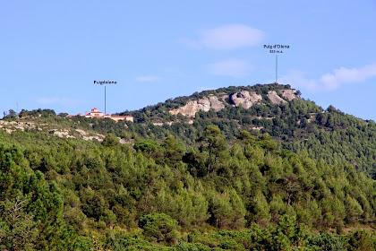 Vistes del Puig d'Olena des de la zona de Les Torres