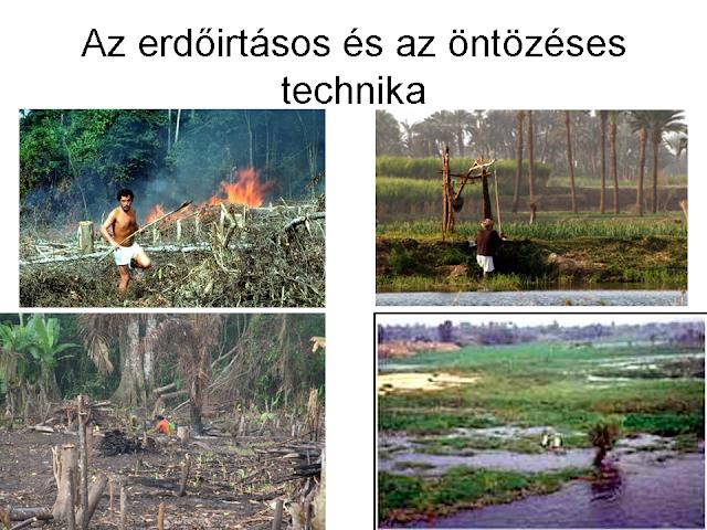 erdőirtásos és öntözéses földművelés