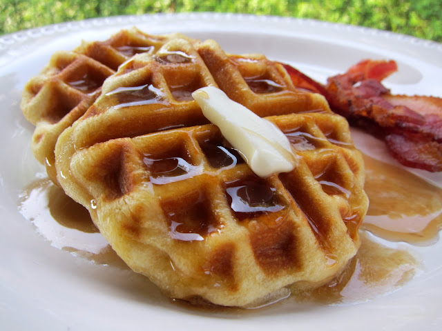 Easy Biscuit Waffles Recipe - only one ingredient! Perfect for a quick breakfast during the week.