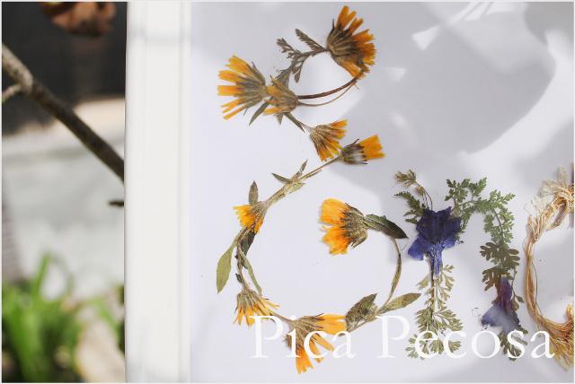 cuadro-con-nombre-hecho-flores-secas-prensadas-diy-03