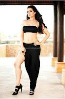 Amisha, patel, hot, navel, photos