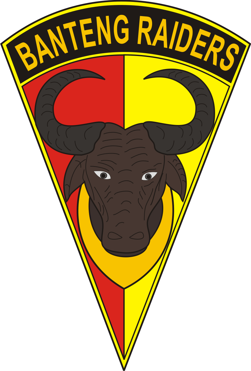 Logo Yonif 401 raider