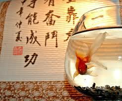 Feng shui total prosperidad feng shui - Feng shui dinero prosperidad ...