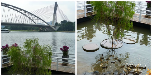 putrajaya-lake-weeping-willow-ducklings