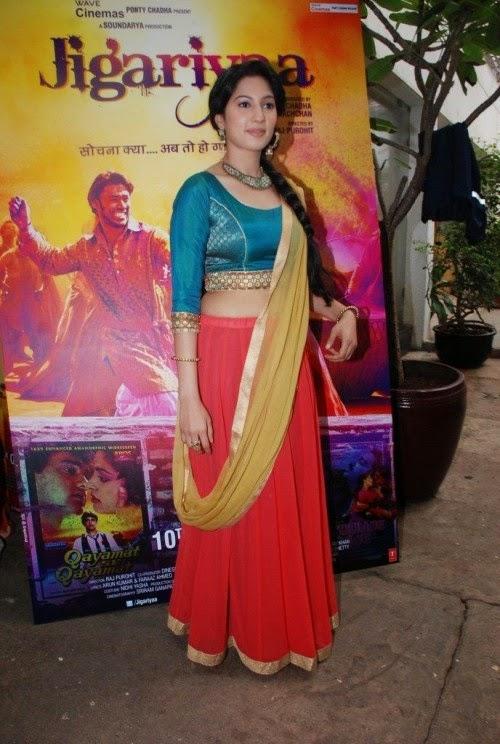Jigariyaa (2014) Hindi Movie Mp3 Songs Download