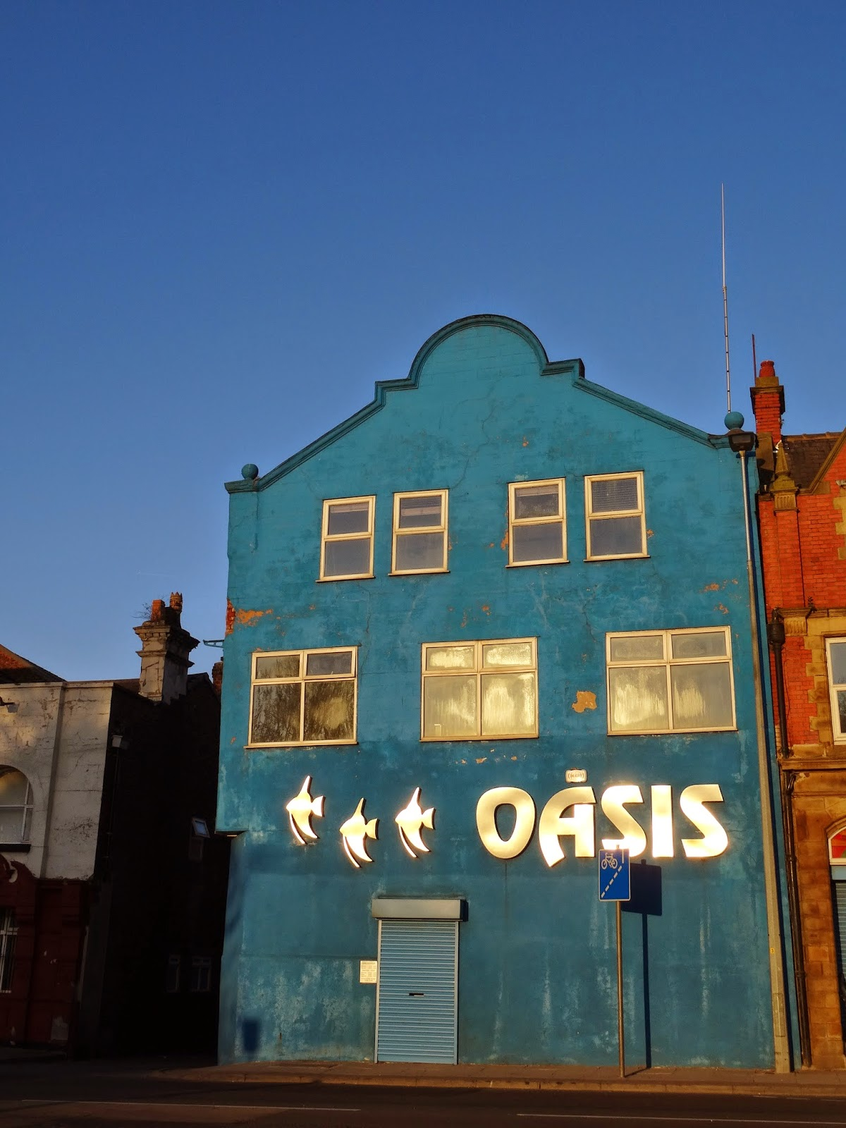 A case of the blues at Oasis aquarium... | mancunian wave