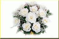 arti_mawar_putih1502