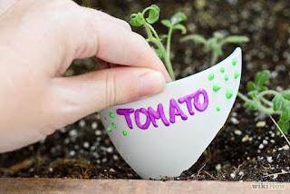 12 Trik Ini Akan Membuat Anda Hobi Berkebun