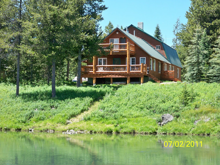 Waterfront River Cabin For Sale