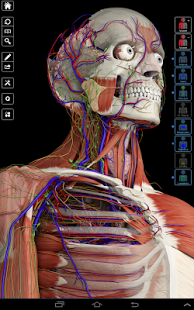 Essential Anatomy 3 Android Apk + Obb