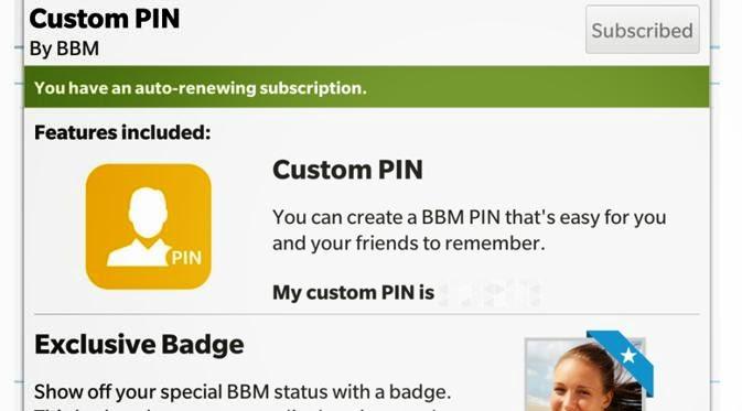 Custom PIN BBM