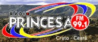 Rádio Princesa FM 99,1