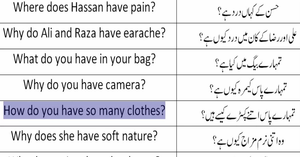 Video 43 Most Common Wh Question In Urdu Hindi Learn
