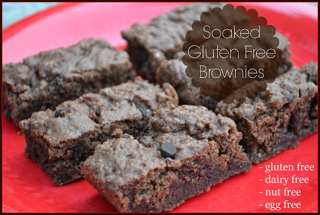 Soaked Gluten Free Brownies (dairy free, egg free, nut free)