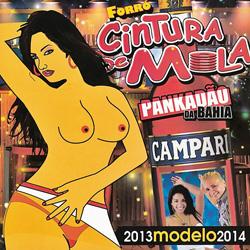 Forr� Cintura De Mola - 2013 Modelo 2014 (2013)