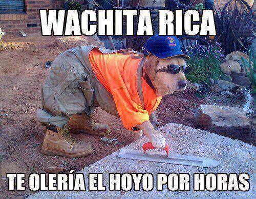 "Perro ""Wachita rica te oleria el hoyo por horas"""