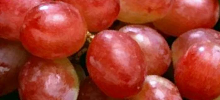 """Manfaat """"Buah Anggur"""" untuk Kesehatan Tubuh"""