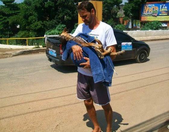 perro abandonado es rescatado