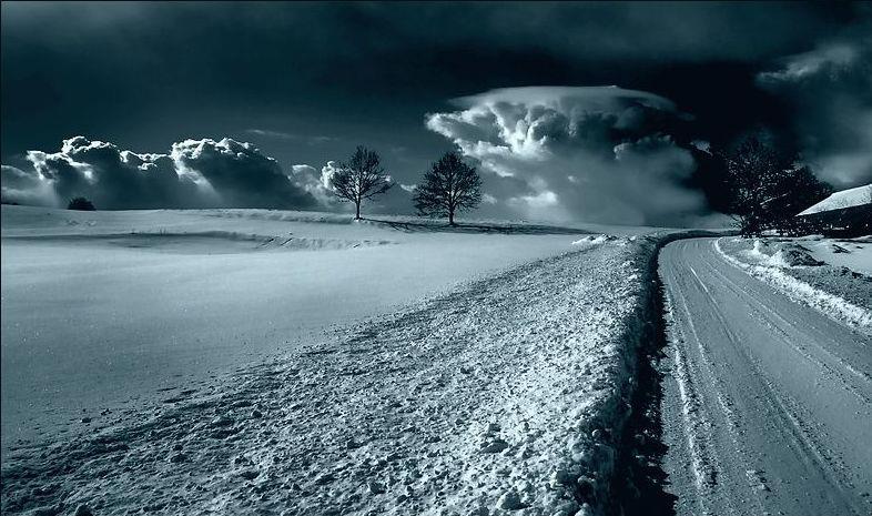 65 fantastiche immagini su Roberto Benigni | Quotes, Film ...