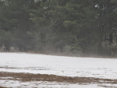 snow sublimating in field