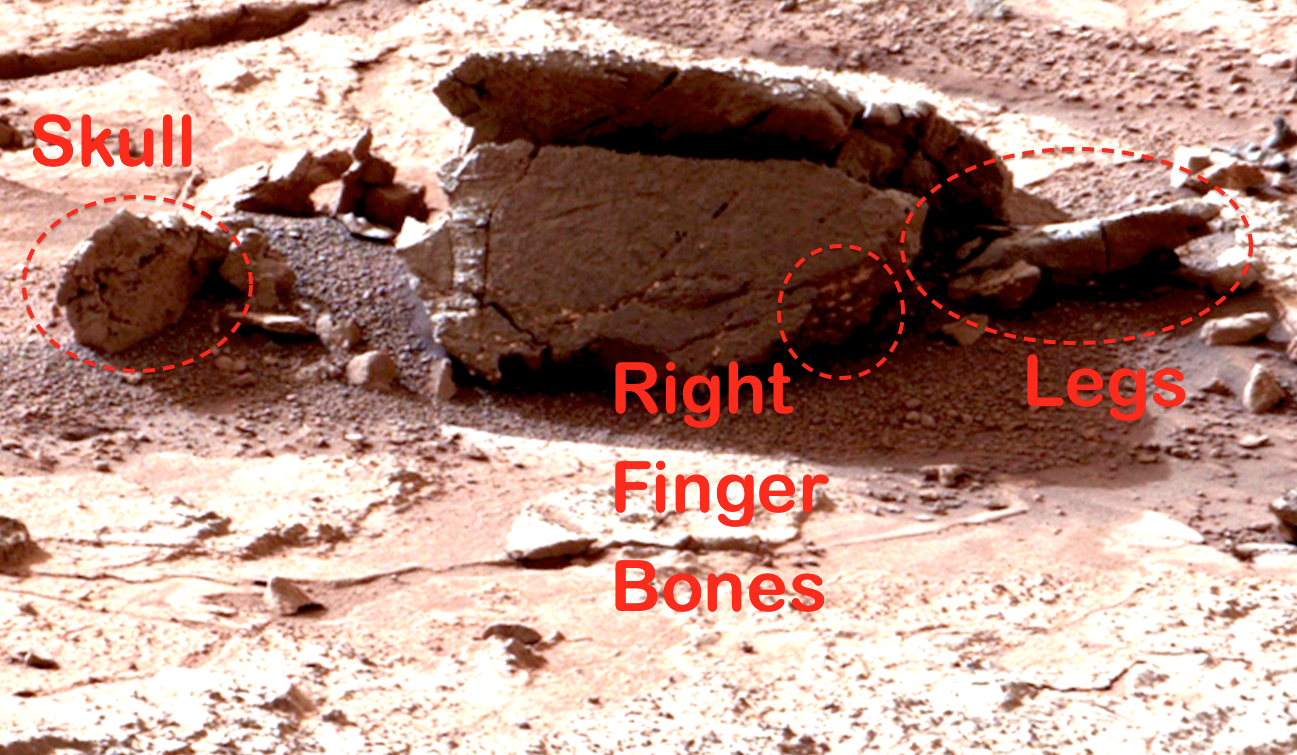 UFO SIGHTINGS DAILY: Alien Body Discovered In NASA ...