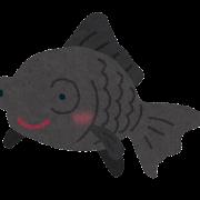 出目金のイラスト(魚)