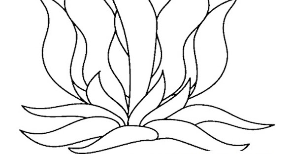 seaweed cartoon coloring pages - photo#15