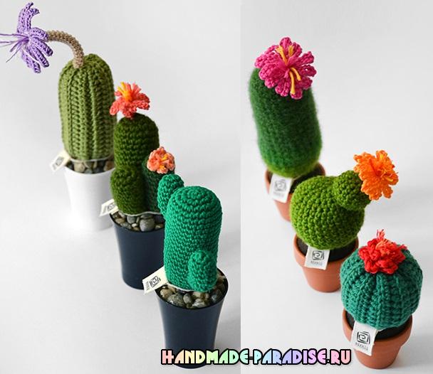 Схемы вязания крючком цветущего кактуса