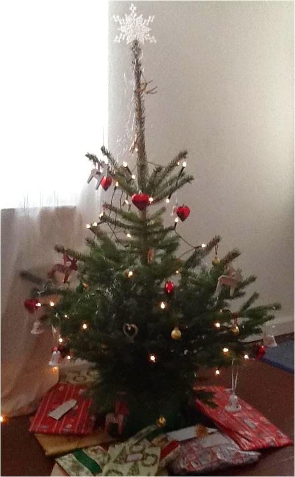 Christmas tree, 2014, mine