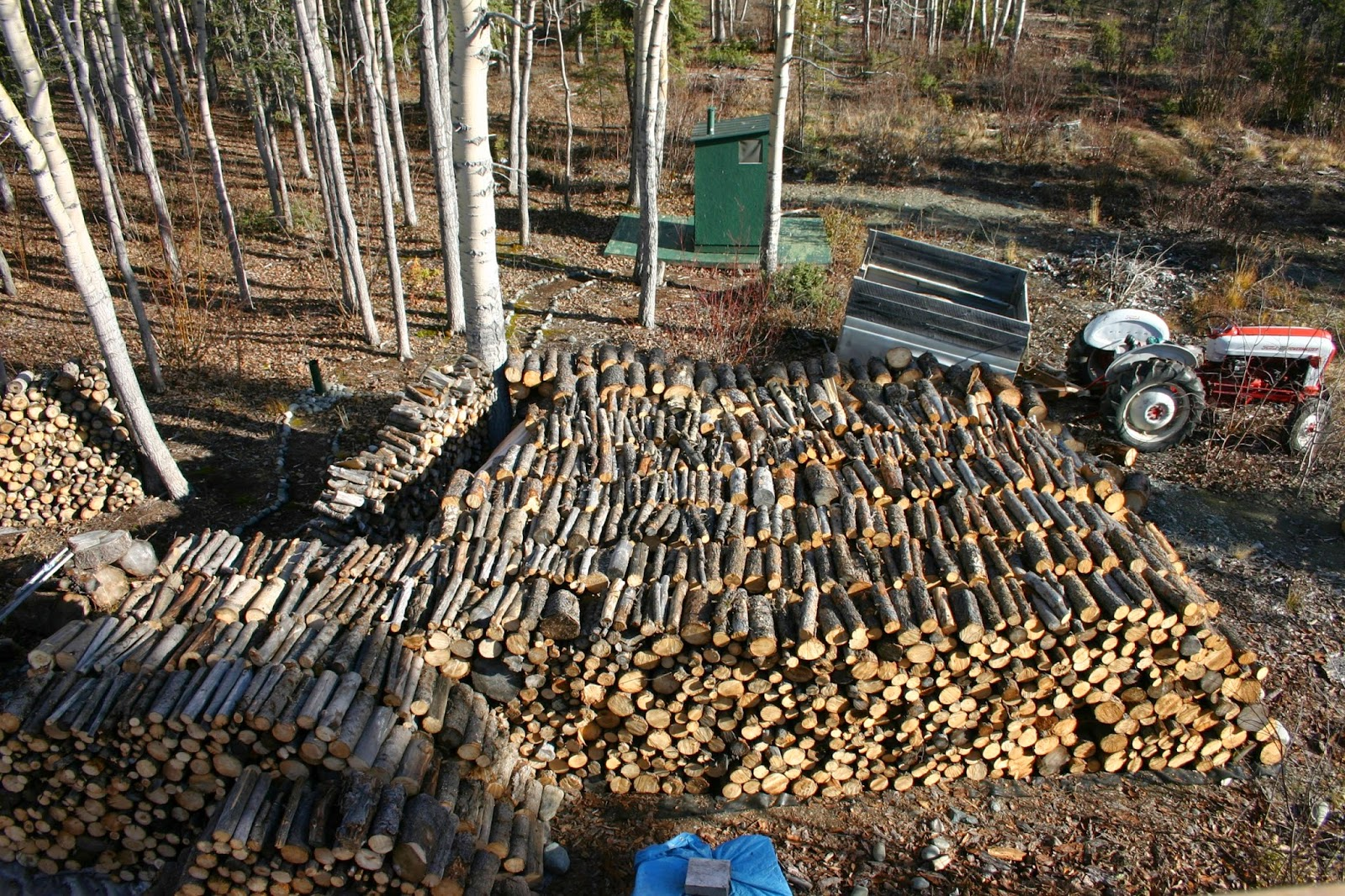 Wood gathering, with cords of firewood at Alaska homestead in Kenny Lake.