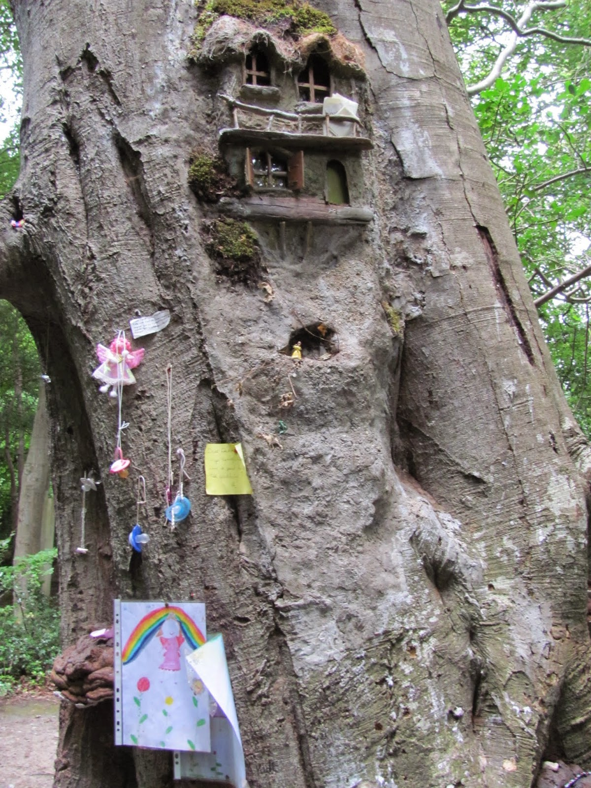 Fairy Gifts Marlay Park Fairy Tree Dublin, Ireland