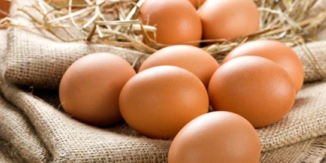 3. Urine Eggs