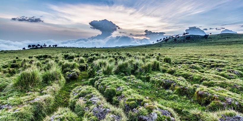 Szemien-hegység Nemzeti Park, Etiópia.