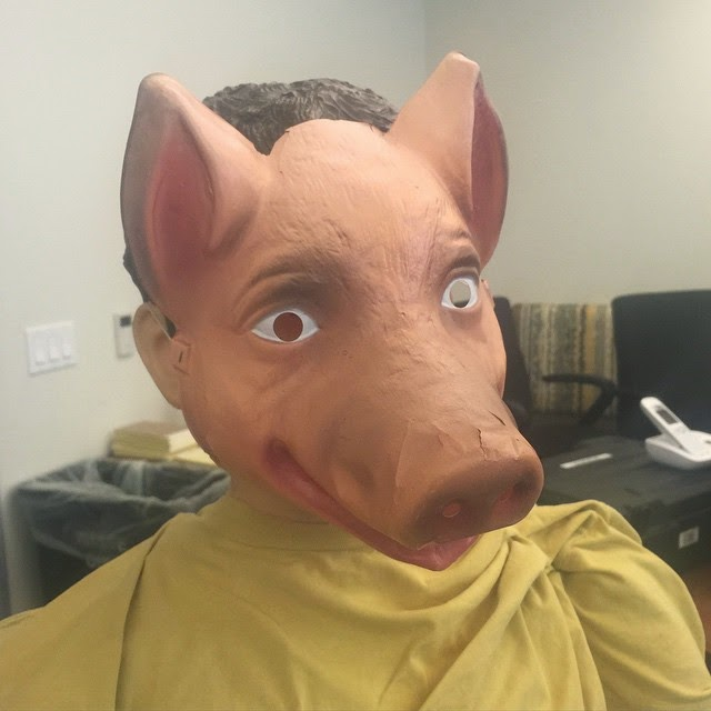 PLL Pig Mask