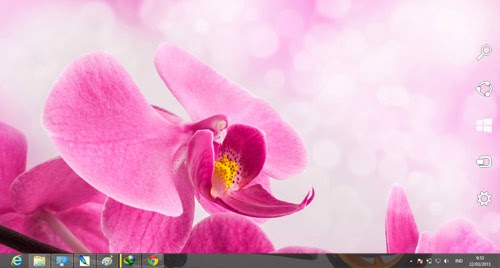 Orchid Flowers Theme For Windows 7 And 8 8.1