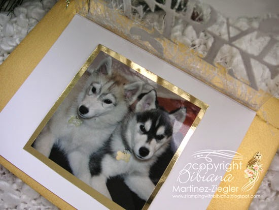 acetate snow photo holder photo puppies inside