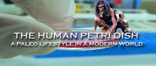 The Human Petri Dish - A Paleo Lifestyle in a Modern World