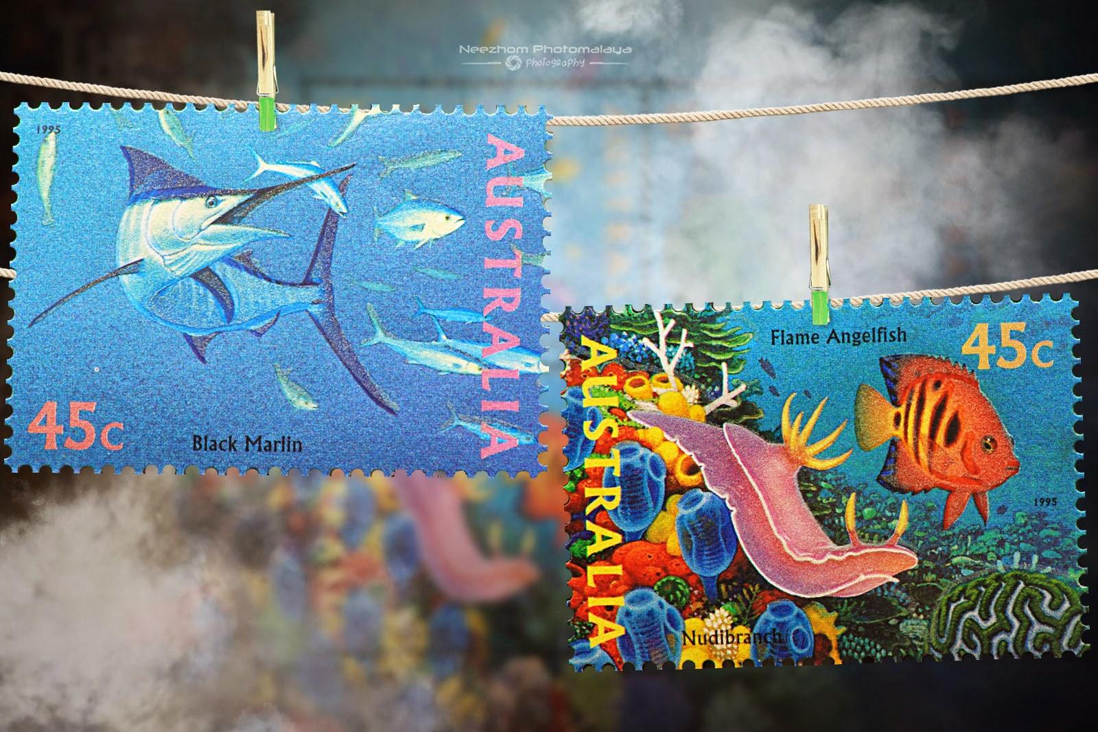 Australia 1995 The World Down Under stamps - Black martin, Nudibranch, Flame angelfish