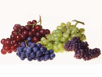 Efficacy and Benefits of Grapes