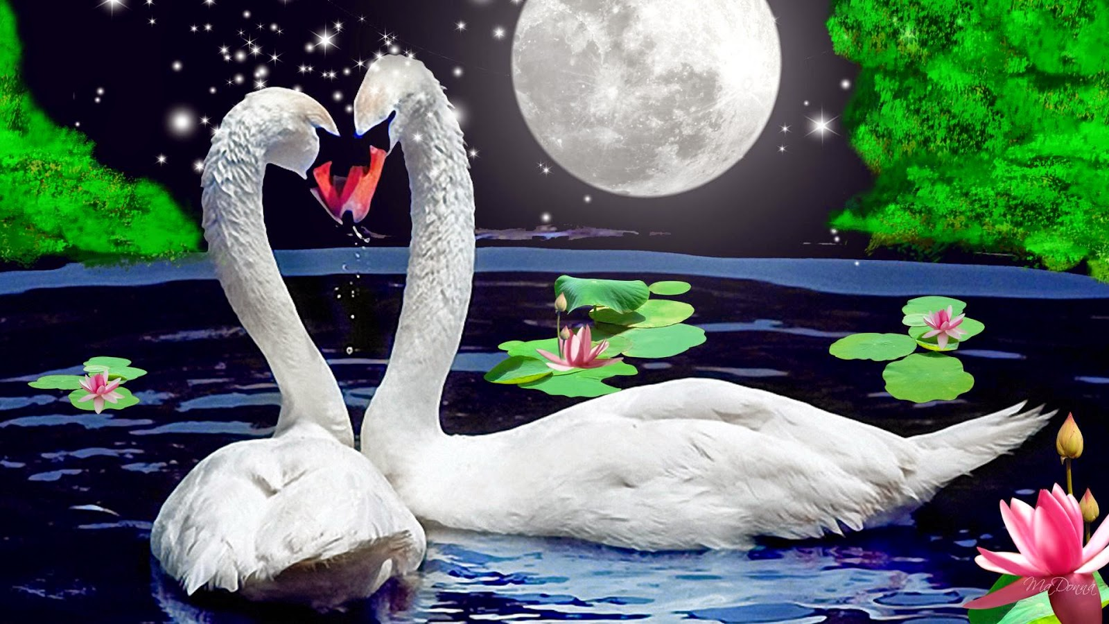 Beautiful And Sweet Love Duck Wallpaper