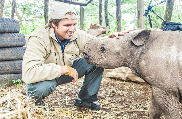 Blind baby rhino rescued by wildlife wardens after he is seen bumping into trees and rocks in the wild