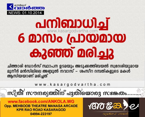Asiya, Kasaragod, Obituary, Adkathbail, Kerala, Child, Fever: 6 month old baby died, Baby