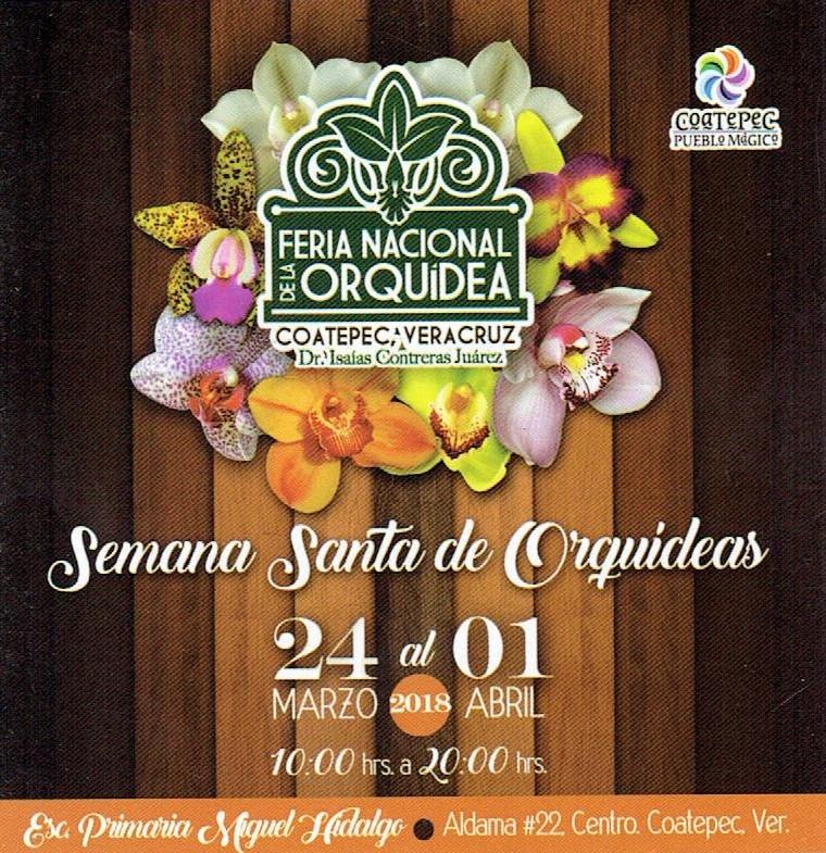 Feria Nacional de la Orquídea