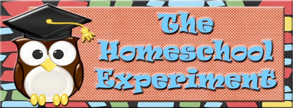 The Homeschool Experiment
