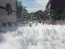 Fiesta de la Espuma 2015