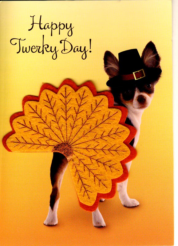 Shake your tail feathers and have a great thanksgiving