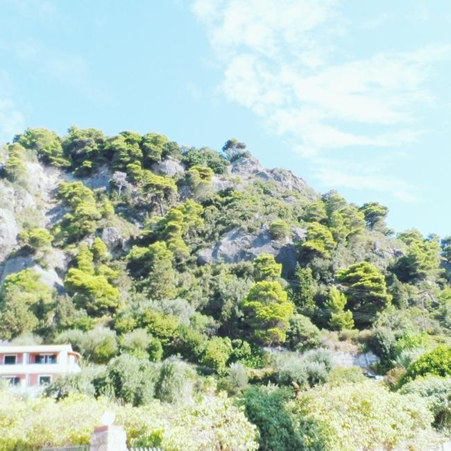 Jelena Zivanovic Instagram @lelazivanovic.Glam fab week.Green nature of Corfu island.Zelena priroda ostrva Krf.
